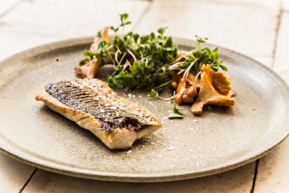 fisk med kantareller - Øens Spisested - Foto Mikkel Bækgaard.jpg