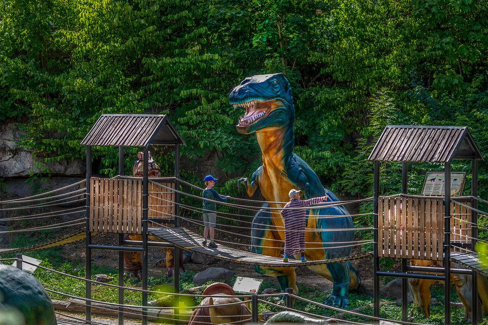 Dino-Webb.jpg