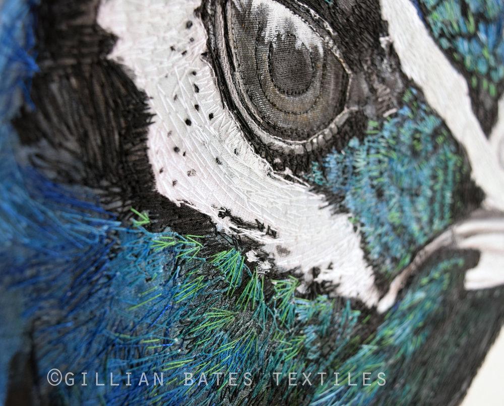 CA Peacock Side Detail WEB.jpg
