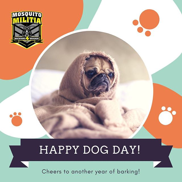 Happy National Pet Day! Our ambush spray protects your family AND your pets from fleas, ticks, gnats, and mosquitos. Call or text today! (980) 277-4205