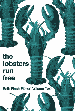 The Lobsters Run Free - Total published words tally: 283As a longlisted participant of the Bath Flash Fiction Award this year (2017) I'm so incredibly excited to get my first flash story published. You can buy the flash and read some amazing stories, from some fantastic international writers. See below the line!'Goodbye, Mr Fox' was written following prompt words provided by Meg Pokrass (do check out her flash writing courses).