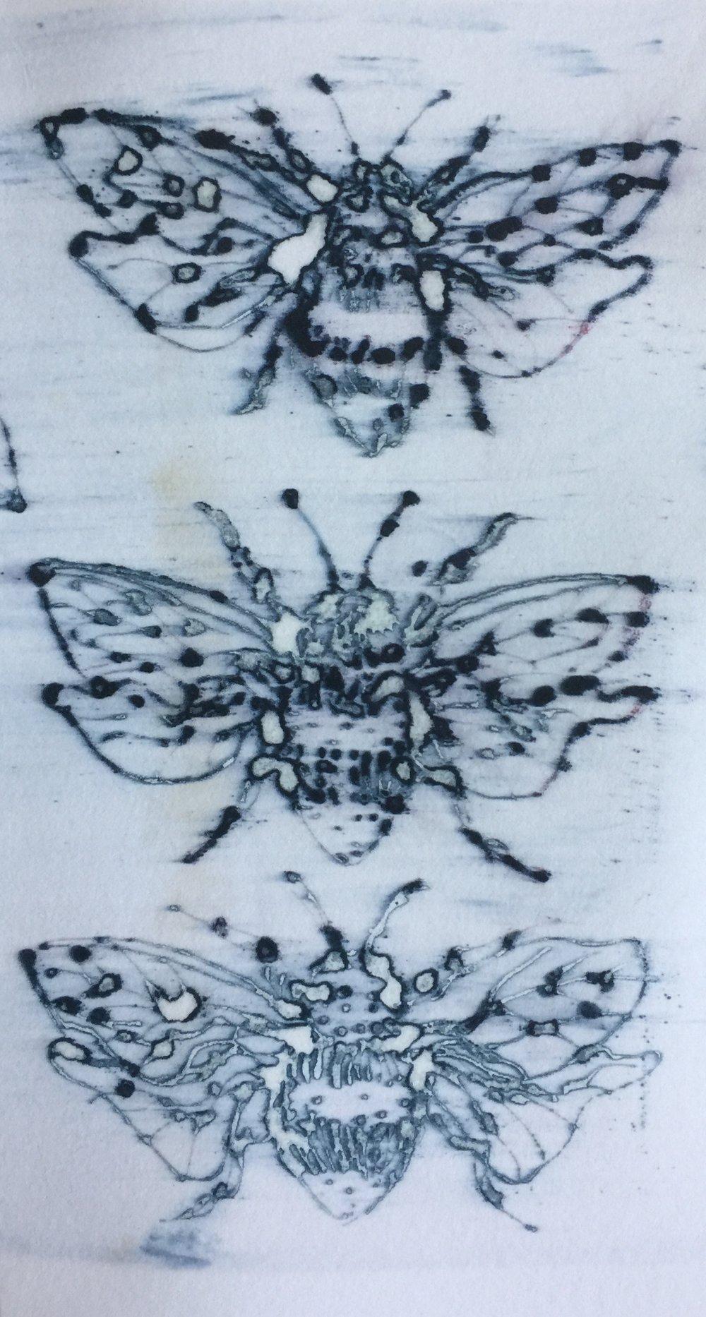 Bees on paper 2018.JPG
