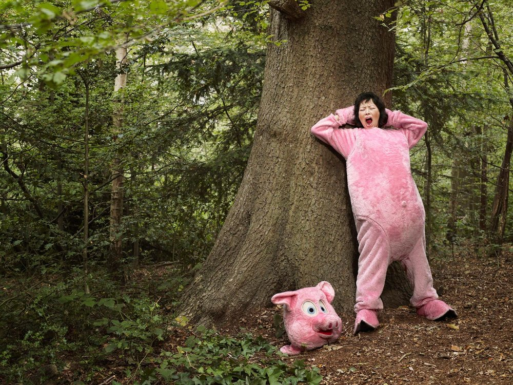 Pig in the woods / Highgate
