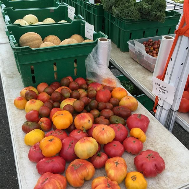 Produce shopping is in full effect. Swing by the market today and grab some fresh, local, produce from @centralvalleyfarm. We are here - rain or shine - #edgewaternj #edgewaterfarmersmarket #fresh #local #farmtotable