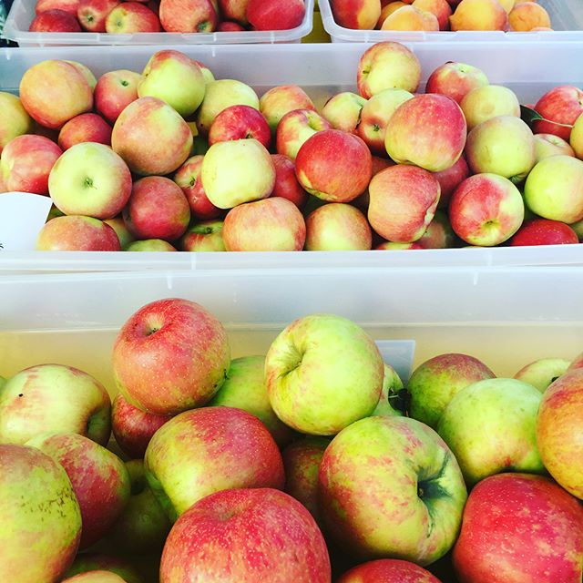It's market day come on down and pick up your juicy farm fresh apples and fresh corn and peaches from @centralvalleyfarm  #FarmersMarket #Fresh #Local #EdgewaterNj