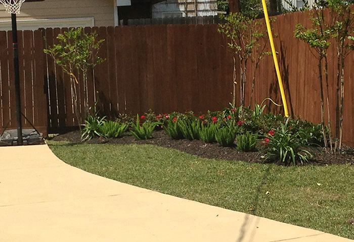 flower bed: after