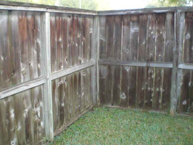 pressure wash: before