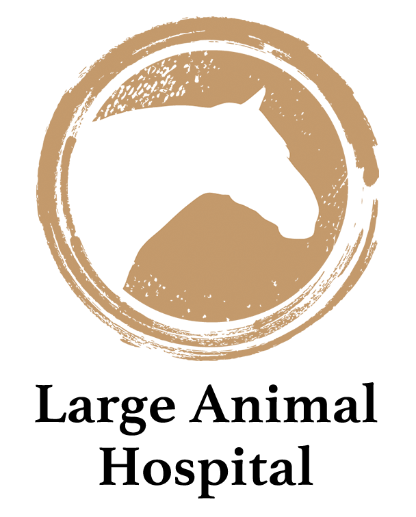 Large-Animal-Hospital.png