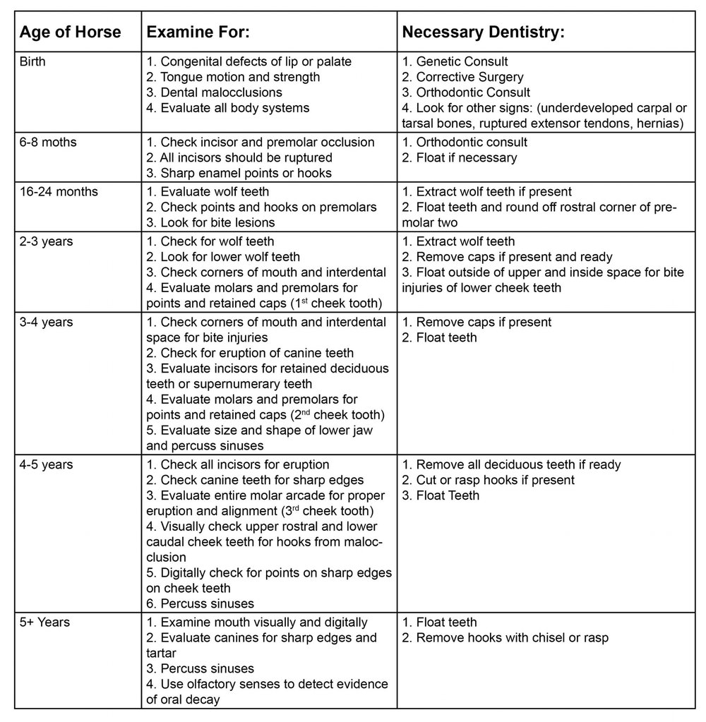 Rideau-Vet-Dental-Guidelines