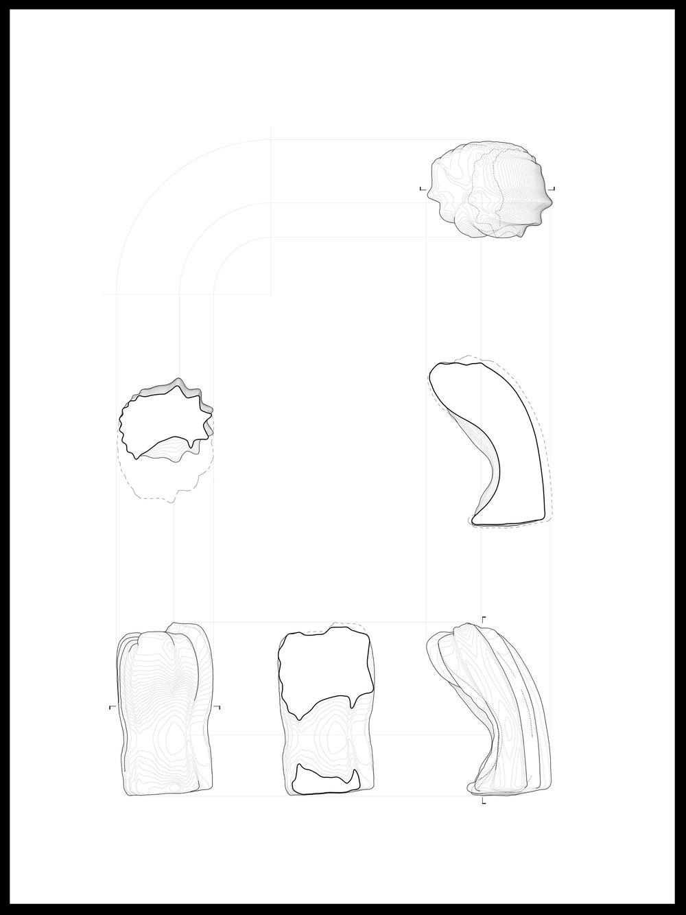 Body 2C Shape Analysis 2.0 01.jpg