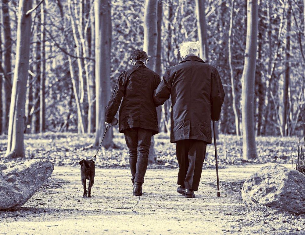 elderly-couple-3304384_1920.jpg