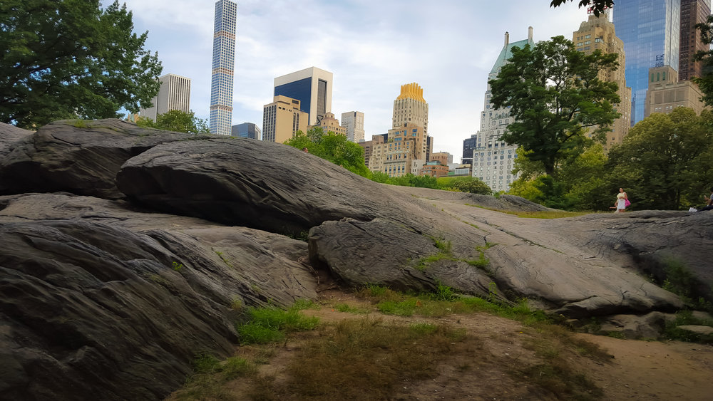 t is fun to imagine the big glacier moving through the park. You can find these rocks all over the park.