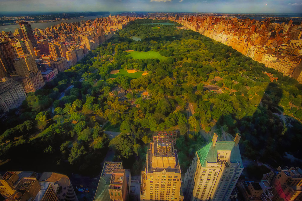 Central Park aerial view, between 5th Avenue ( UES ,  right ) and Eight Avenue – central park west( UWS ,  left ).