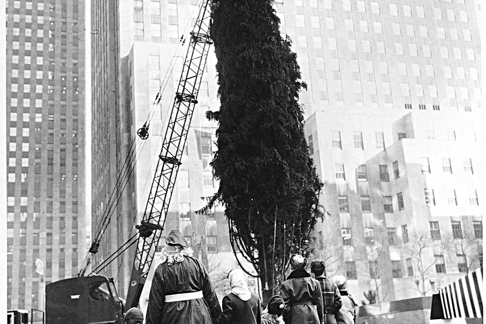 Santa & Friends watch as the 1951 tree is raised. [82 feet (25 meters) tall, from Lake Ronkonkoma, New York] image: nypl