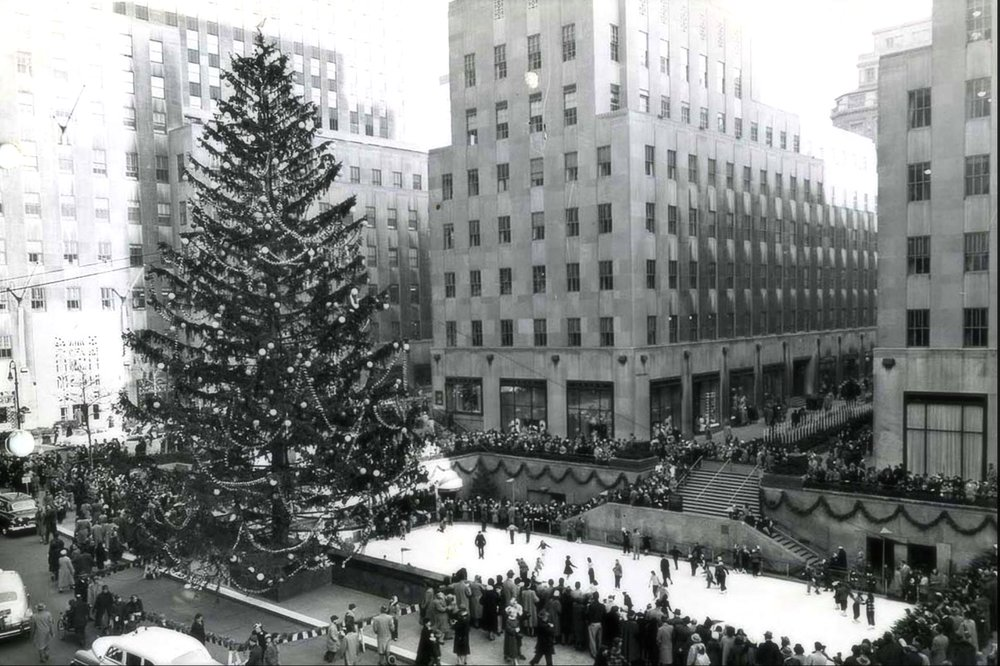 In the 1950s, workers began using scaffolding to air in decorating the trees. Before the decade was over, the process called for twenty men and a period of nine days. [85 feet (26 meters) tall, from Allamuchy, New Jersey]
