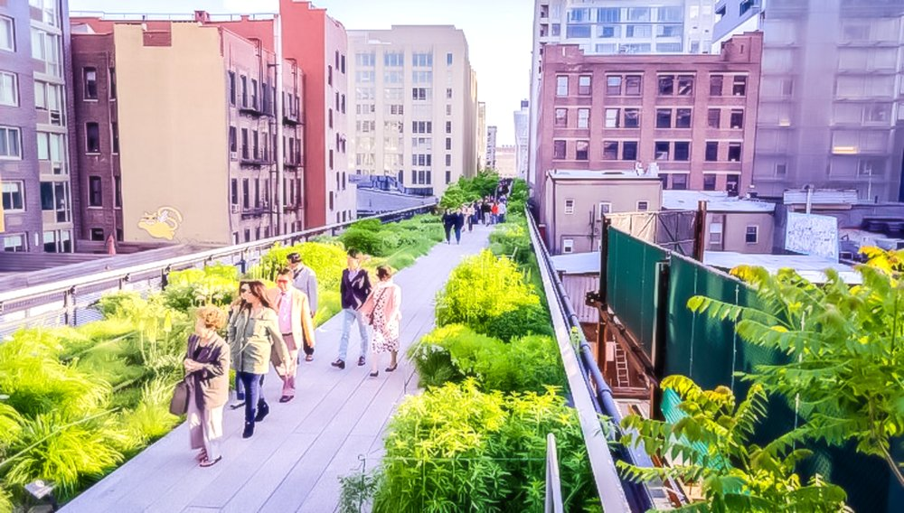 walk along the high line is a great thing to do in new york city.