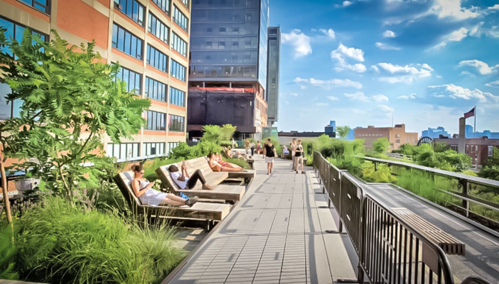 summertime: reading a good book or just chilling out at the high line is great plan. photo: lucas compan