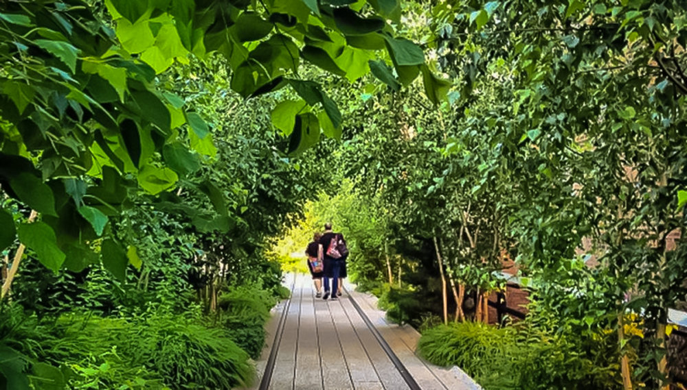 in the middle of the chaotic manhattan, you can find a peaceful environment at the high line. photo: lucas compan