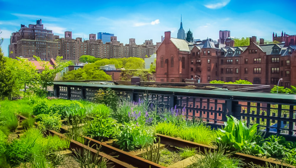 view of the empire state building and chelsea from the high line. photo: lucas compan