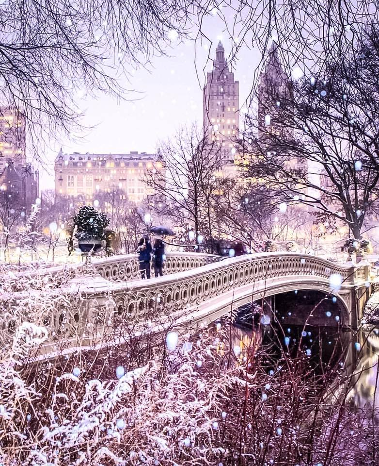 bow bridge in central park. photo:    @lucascompan