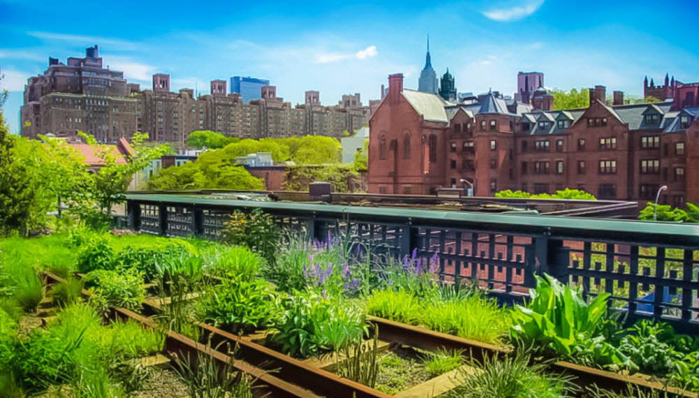 It is love at first sight: you will fall in love with the high line at the very first time