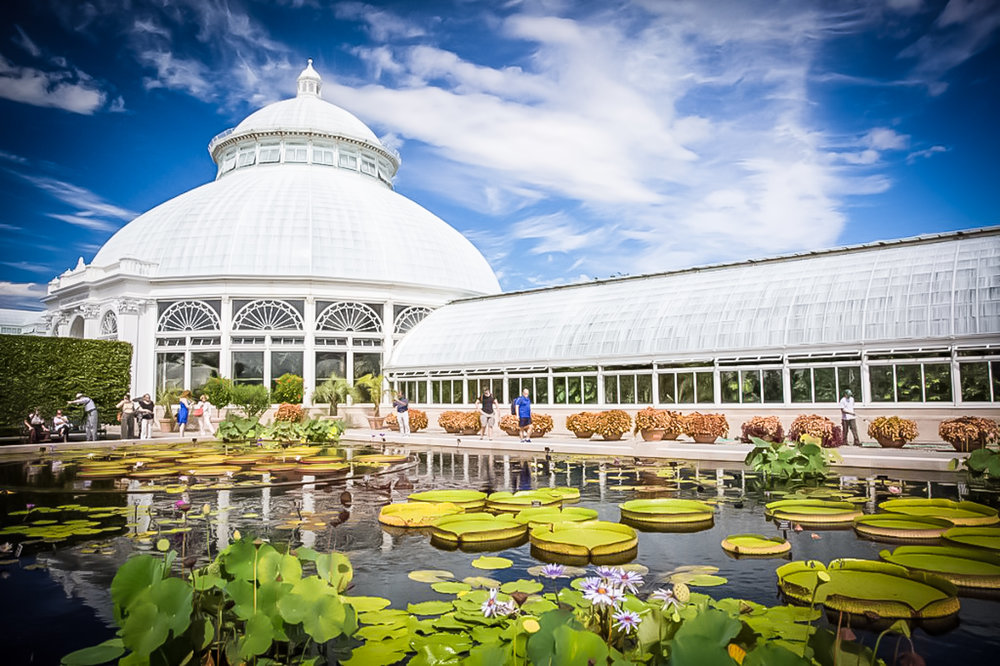 new york botanical garden. photo: tripadvisor