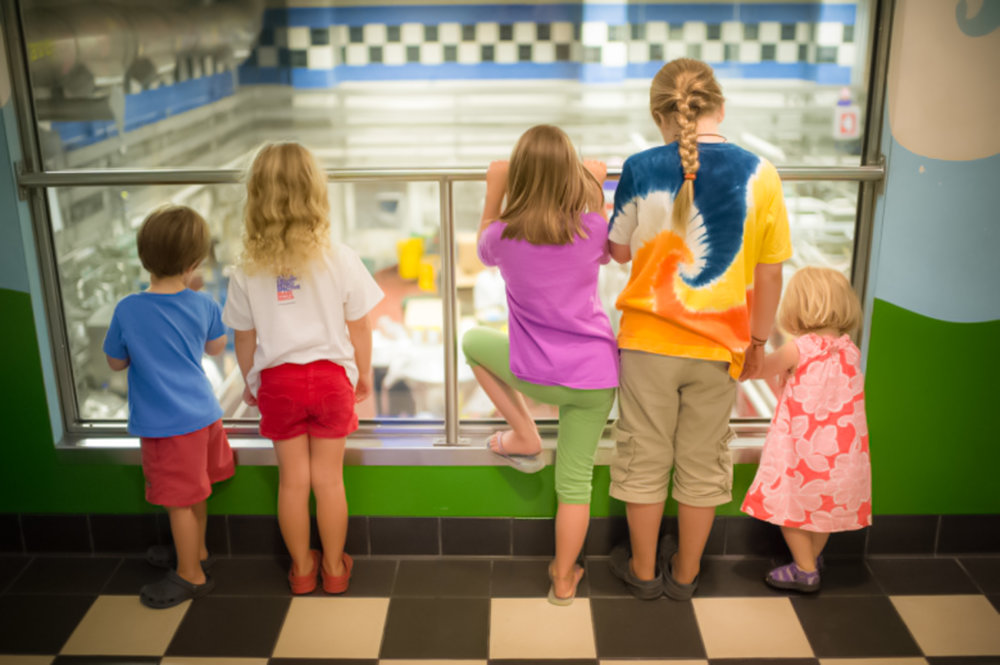 kids go crazy at the ben & jerry's factory tour: sweet fun all the time. image: ben & jerry's