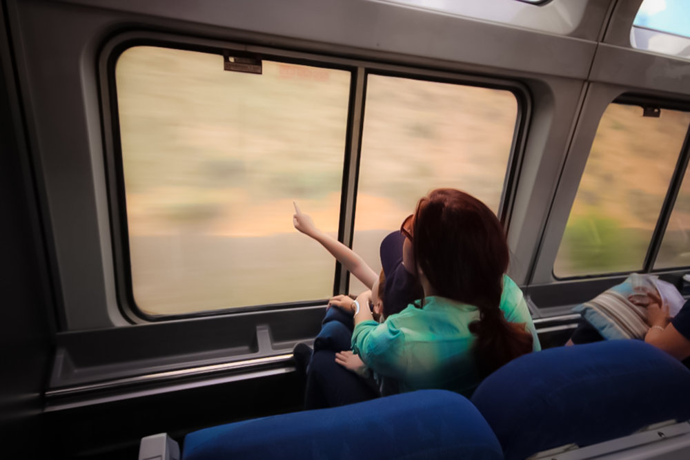 the views from the train's windows is breathtaking.    click here for important tips to remember when traveling with kids on trains, brought to you by Amtrak.