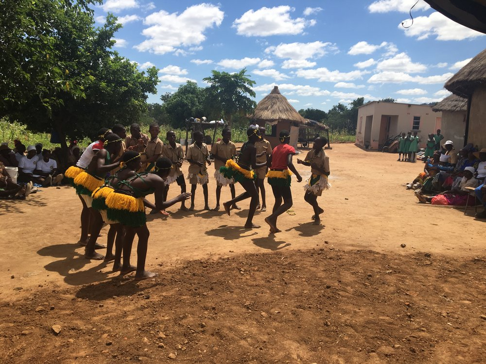 Zienzele kids from Musvovi Primary School provided wonderful entertainment, and did their village proud!