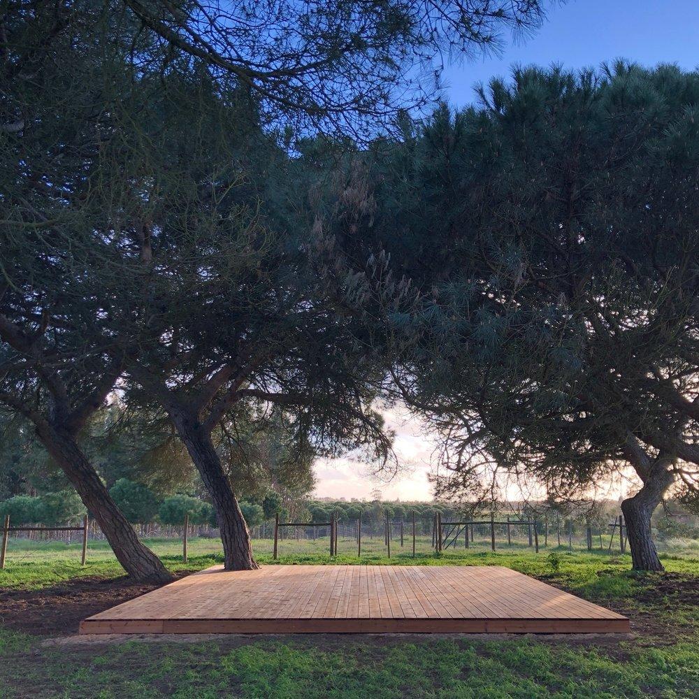 Cocoon Portugal | Pine Shala.JPG