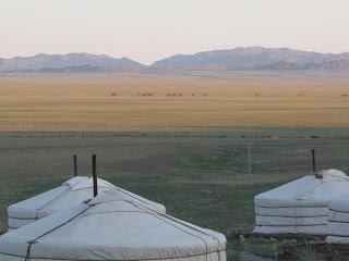 marilyn mongolia 1.jpg