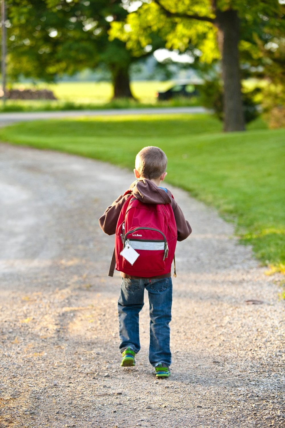 Our Story - With experience dealing with school districts, we know that many are looking for a way to support good behavior and promote positive messages throughout the school district. Everyone would like to implement a program like PBIS, but the question is how to fund it. Already being in the business of  decorated apparel and signs, we thought there must be a way that BeeGraphix can help encourage the implementation of these programs.This is why we started PBIS Signs & Banners, a division of BeeGraphix. This division features a website full of ideas and options for signage, banners and awards recommended by the PBIS program. It also features a way to fund the program through our creative fundraising progam and the BeeGraphix Giveback Program.With help from our company to fund the program and supply the products, we can make PBIS Programs possible in every school district.Learn more ➝