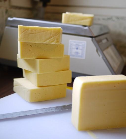 Cheese-510x565.jpg