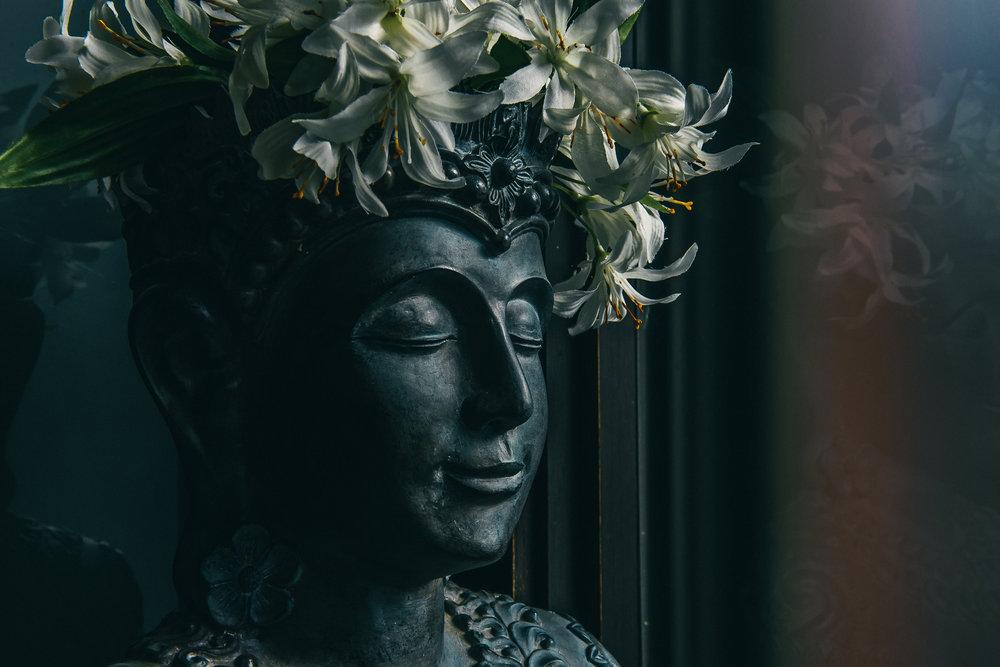 Nectar(1.20)-31.jpg