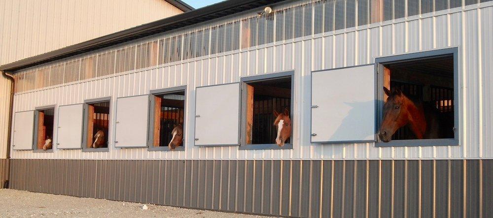 horses & barn (1).jpg
