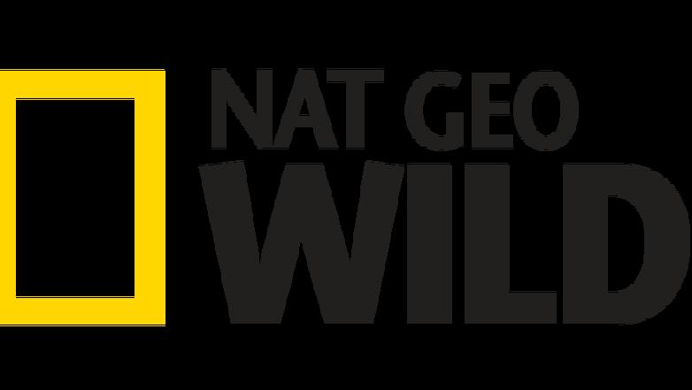 logo_ngw-e1513188241791.png