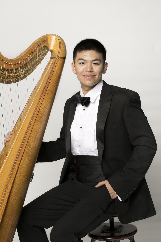 Harpist 2.jpg