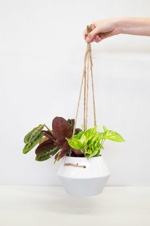 Hanging Ceramic Planter