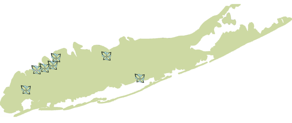 Long Island Physical Therapy Map
