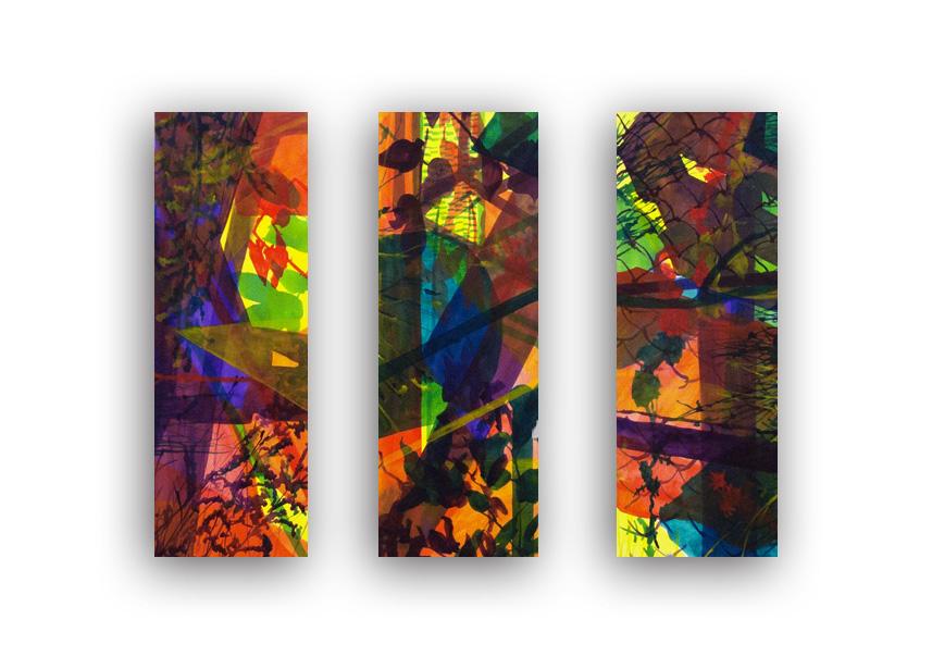 Shadow Study Triptych