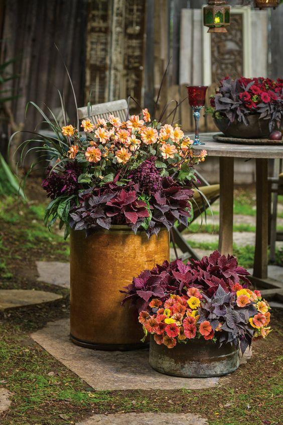 Autumn Pots 2.jpg