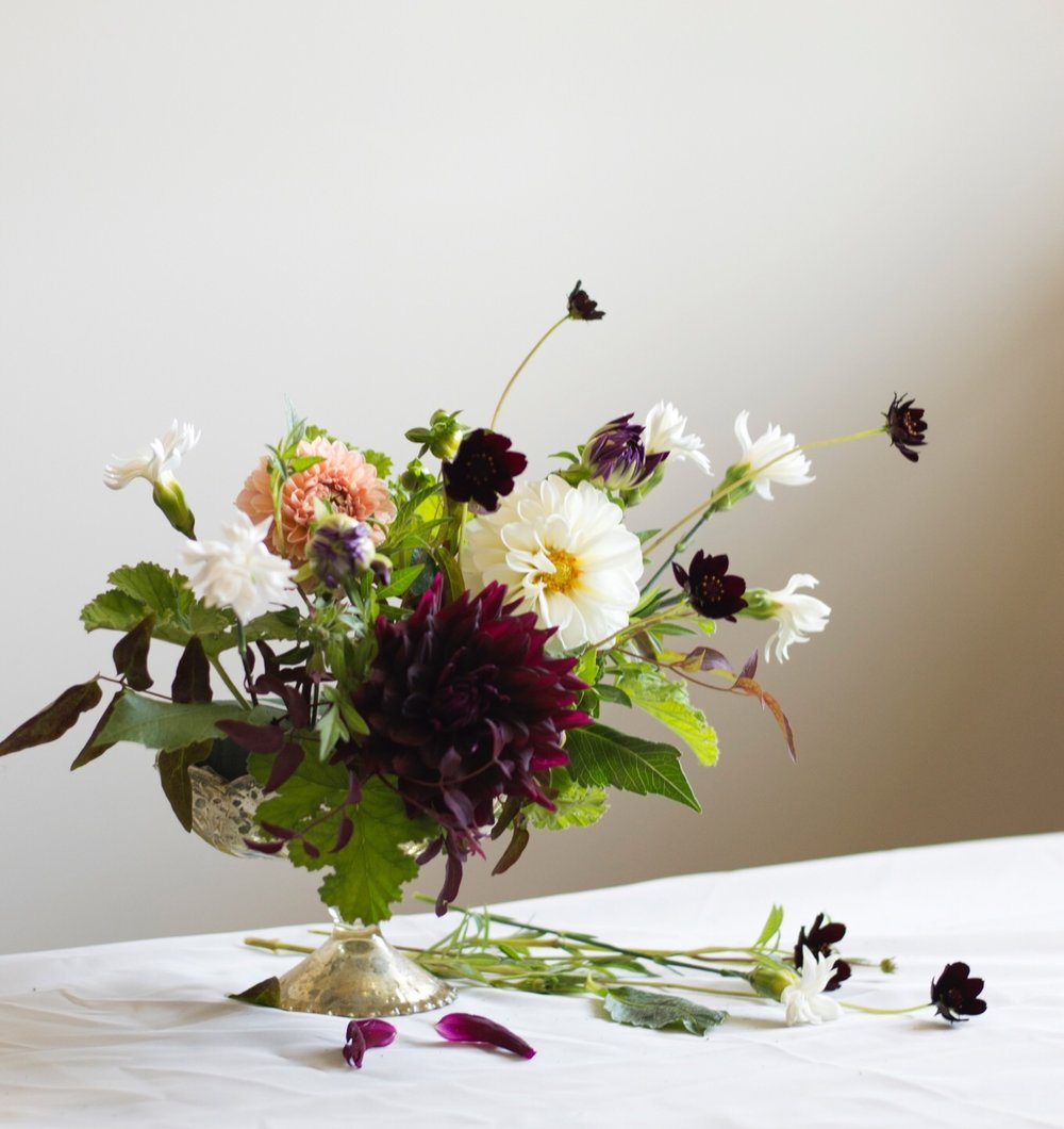 arrangements - Our arrangements are thoughtfully designed with blooms within the current season. For all occasions, and no occasion at all!