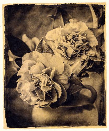 I Hide Myself Within My Flower