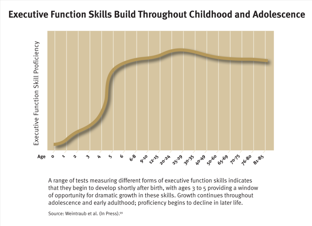 Executive-Function-and-Early-Learning.png