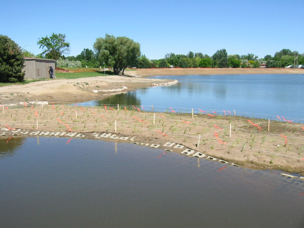 Eastlake Reservoir - Western Lands designed the restoration plans for this 12-acre lake located in a park in Greeley, Colorado. We developed shoreline stabilizations, stormwater management, lake bottom grading, and overall aesthetic improvements for this highly used park project.