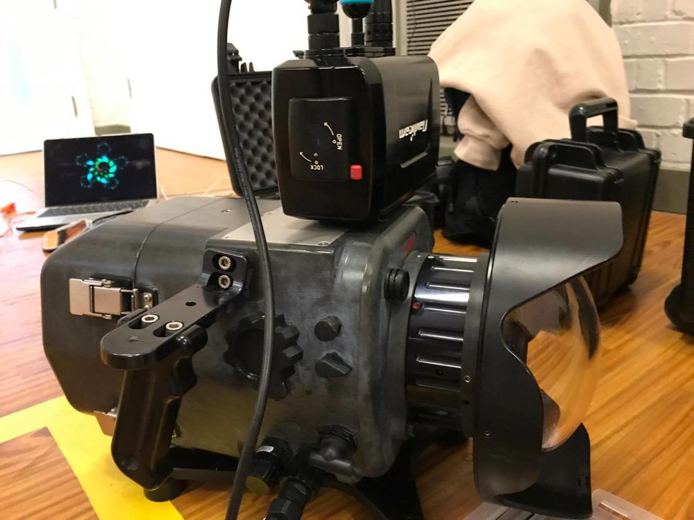 Sony FS7 Underwater Housing.jpeg