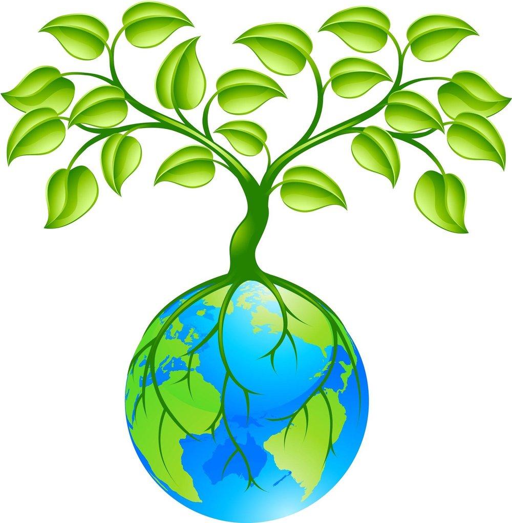 top-earth-tree-drawing.jpg