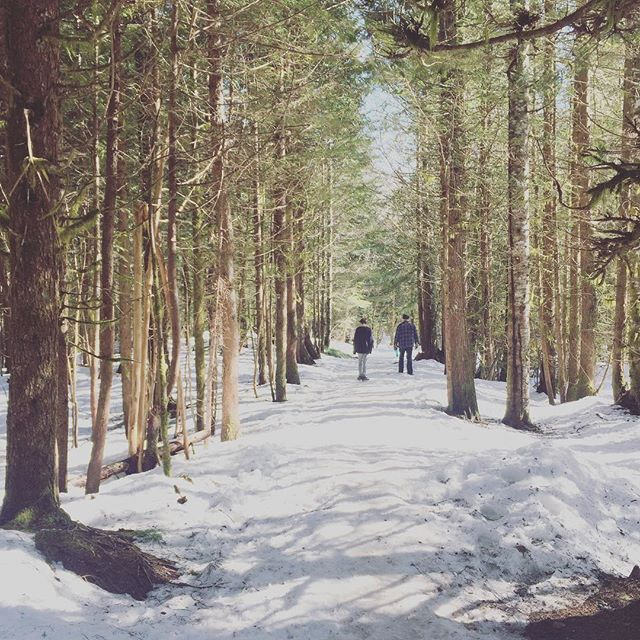 Feeling refreshed after a little spring break (PNW style) and a few walks in the woods. Looking forward to being back in the clinic and a spring of community, vitality, and healing! Hoping that there was fresh air and time for rest for those of you who had some time for a spring break too! #pnwspring #springbreak #sunandsnow #healthyspring #silvertonoregon