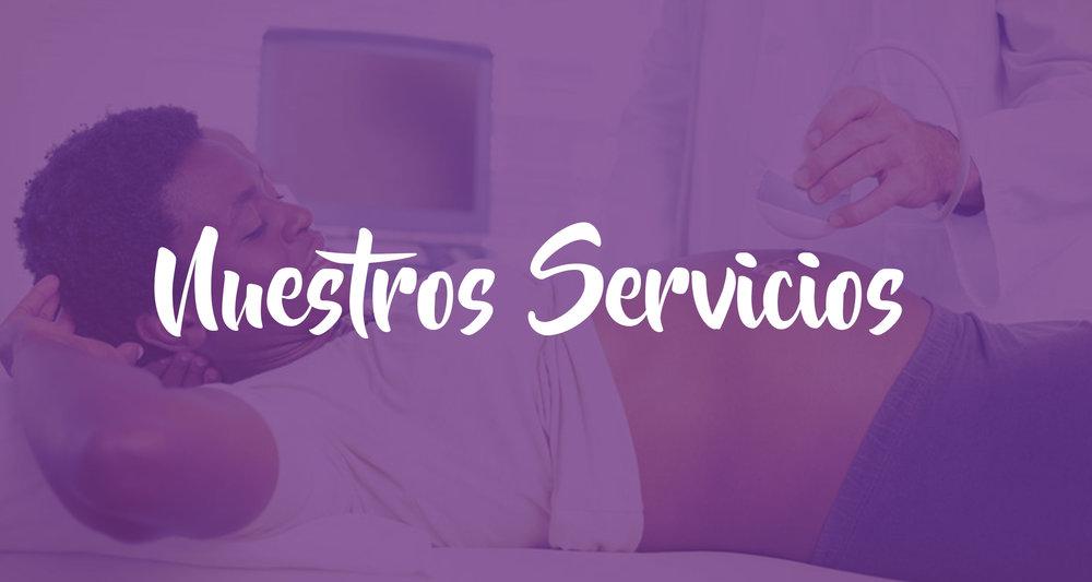 header-servicios.jpg