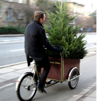 If you do decide to pack and use your holiday decor, pack the items you intend to use this year together. And don't move it on a bicycle. ;)